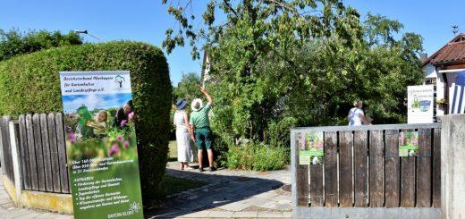 Tag der offenen Gartentür bei Familie Bach